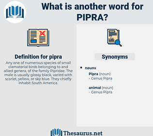 pipra, synonym pipra, another word for pipra, words like pipra, thesaurus pipra