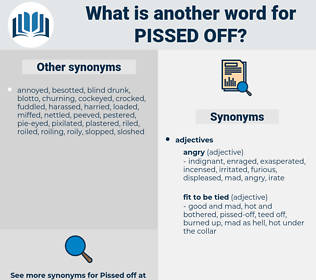 pissed off, synonym pissed off, another word for pissed off, words like pissed off, thesaurus pissed off