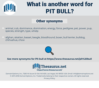 pit bull, synonym pit bull, another word for pit bull, words like pit bull, thesaurus pit bull