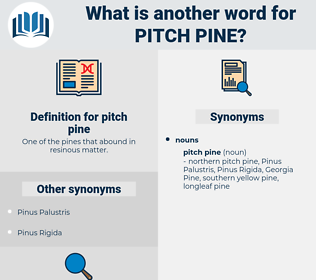 pitch pine, synonym pitch pine, another word for pitch pine, words like pitch pine, thesaurus pitch pine