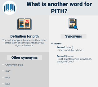 pith, synonym pith, another word for pith, words like pith, thesaurus pith