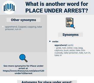 place under arrest, synonym place under arrest, another word for place under arrest, words like place under arrest, thesaurus place under arrest