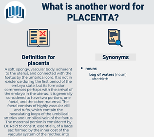 placenta, synonym placenta, another word for placenta, words like placenta, thesaurus placenta