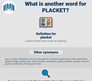 placket, synonym placket, another word for placket, words like placket, thesaurus placket