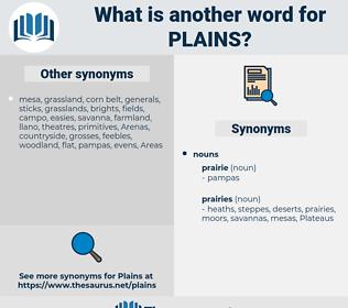 plains, synonym plains, another word for plains, words like plains, thesaurus plains
