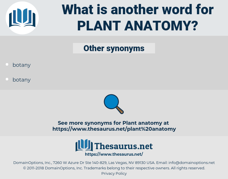 Synonyms for PLANT ANATOMY - Thesaurus.net