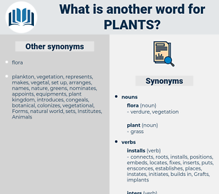Plants, synonym Plants, another word for Plants, words like Plants, thesaurus Plants