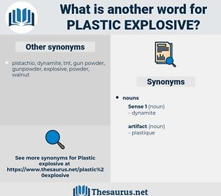 plastic explosive, synonym plastic explosive, another word for plastic explosive, words like plastic explosive, thesaurus plastic explosive