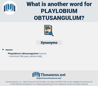 Playlobium Obtusangulum, synonym Playlobium Obtusangulum, another word for Playlobium Obtusangulum, words like Playlobium Obtusangulum, thesaurus Playlobium Obtusangulum