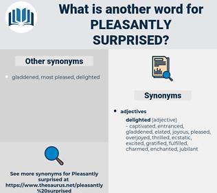 pleasantly surprised, synonym pleasantly surprised, another word for pleasantly surprised, words like pleasantly surprised, thesaurus pleasantly surprised