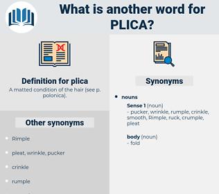 plica, synonym plica, another word for plica, words like plica, thesaurus plica
