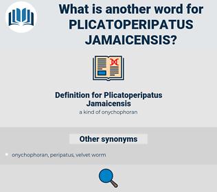 Plicatoperipatus Jamaicensis, synonym Plicatoperipatus Jamaicensis, another word for Plicatoperipatus Jamaicensis, words like Plicatoperipatus Jamaicensis, thesaurus Plicatoperipatus Jamaicensis