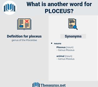ploceus, synonym ploceus, another word for ploceus, words like ploceus, thesaurus ploceus