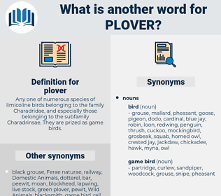 plover, synonym plover, another word for plover, words like plover, thesaurus plover