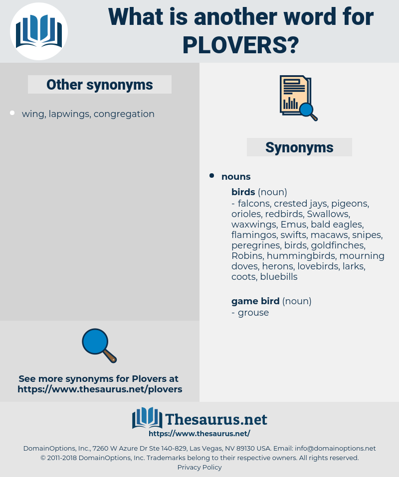plovers, synonym plovers, another word for plovers, words like plovers, thesaurus plovers