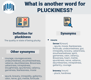 pluckiness, synonym pluckiness, another word for pluckiness, words like pluckiness, thesaurus pluckiness