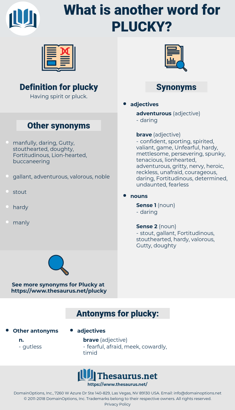 plucky, synonym plucky, another word for plucky, words like plucky, thesaurus plucky