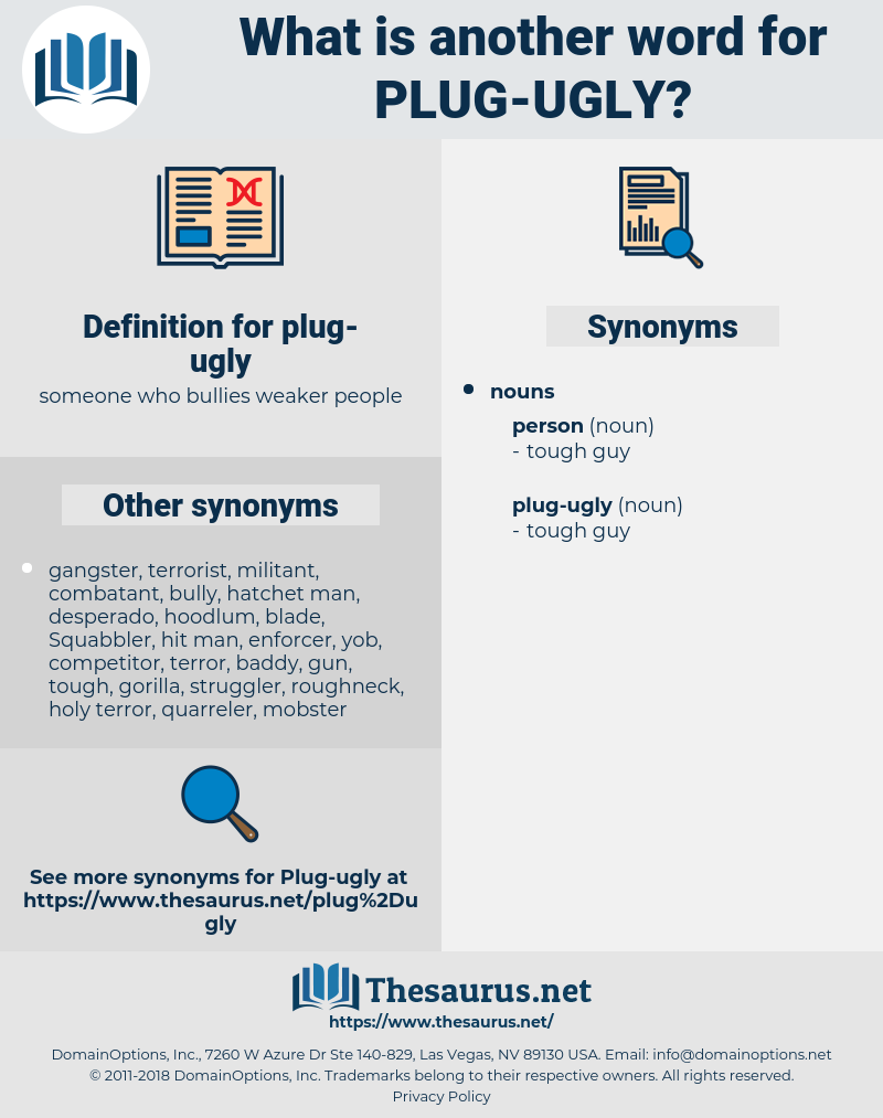 plug-ugly, synonym plug-ugly, another word for plug-ugly, words like plug-ugly, thesaurus plug-ugly