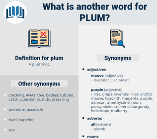 plum, synonym plum, another word for plum, words like plum, thesaurus plum