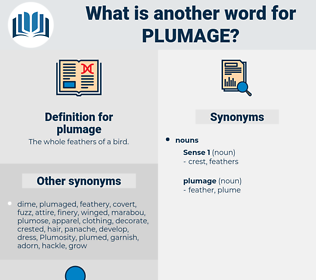 plumage, synonym plumage, another word for plumage, words like plumage, thesaurus plumage