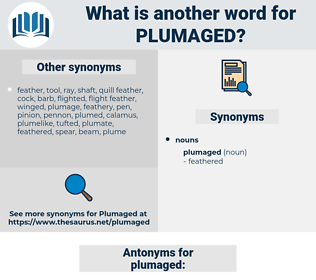 plumaged, synonym plumaged, another word for plumaged, words like plumaged, thesaurus plumaged