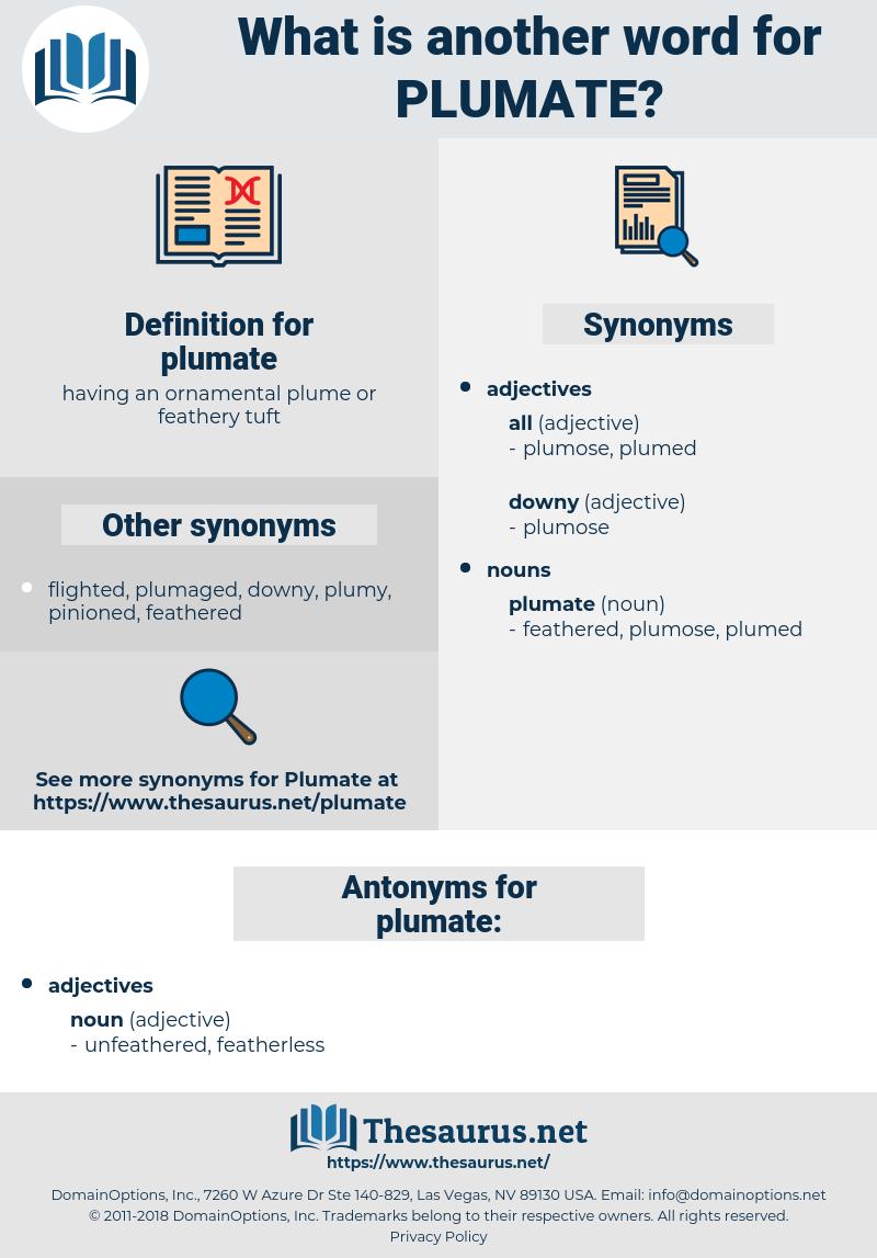 plumate, synonym plumate, another word for plumate, words like plumate, thesaurus plumate