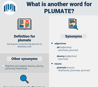 plumate, synonym plumate, another word for plumate, words like plumate, thesaurus plumate