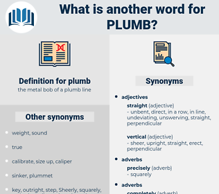 plumb, synonym plumb, another word for plumb, words like plumb, thesaurus plumb