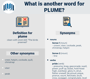 plume, synonym plume, another word for plume, words like plume, thesaurus plume