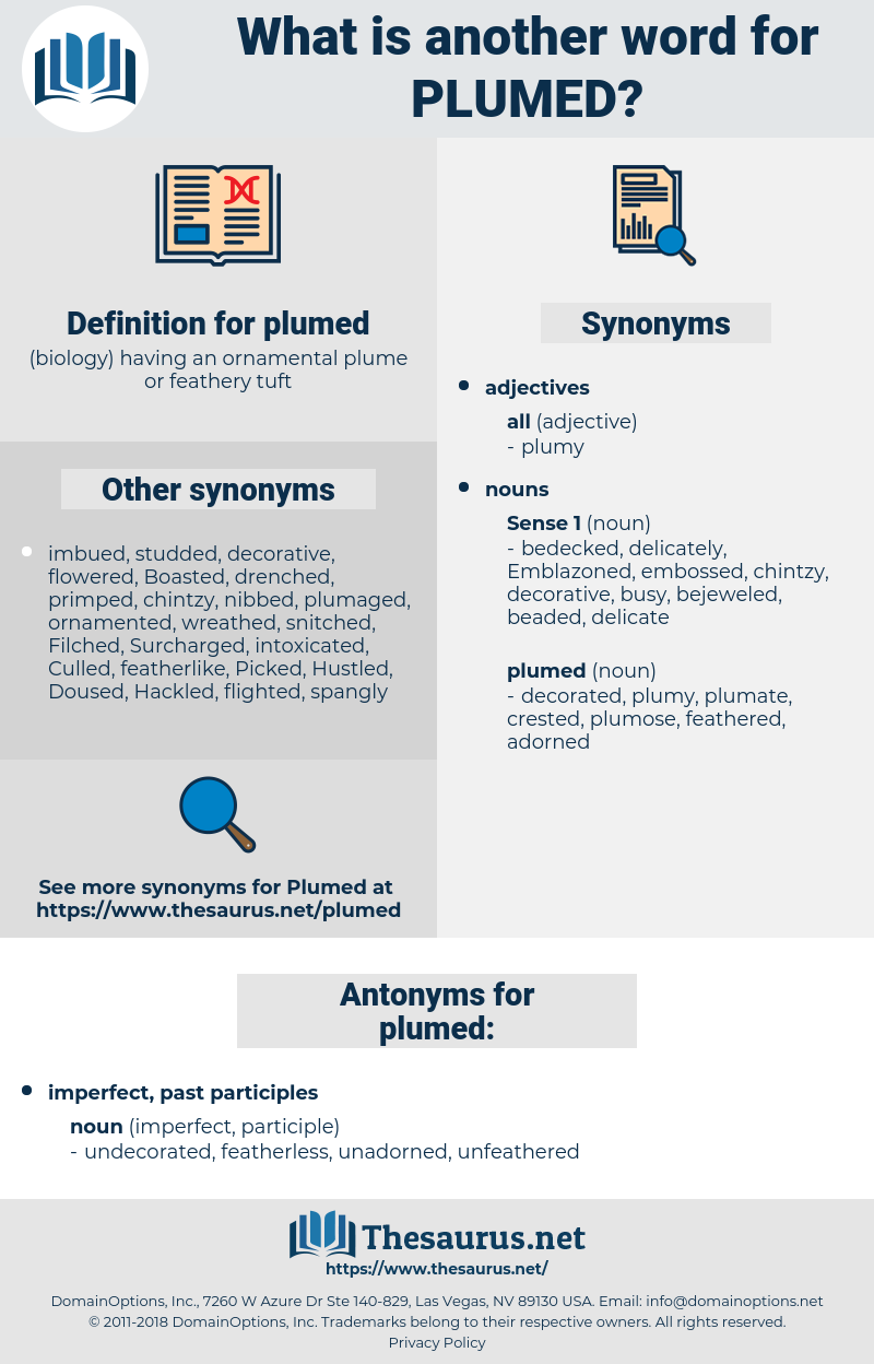 plumed, synonym plumed, another word for plumed, words like plumed, thesaurus plumed