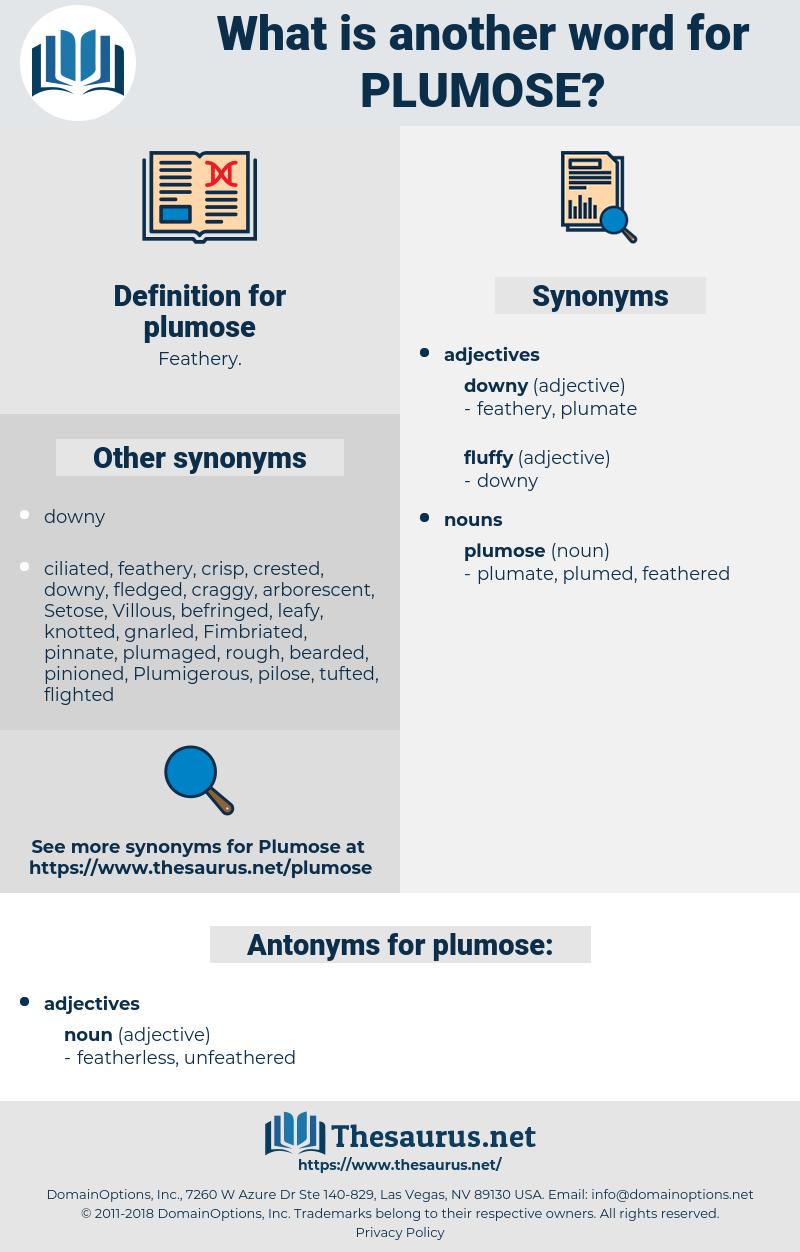 plumose, synonym plumose, another word for plumose, words like plumose, thesaurus plumose