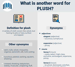 plush, synonym plush, another word for plush, words like plush, thesaurus plush