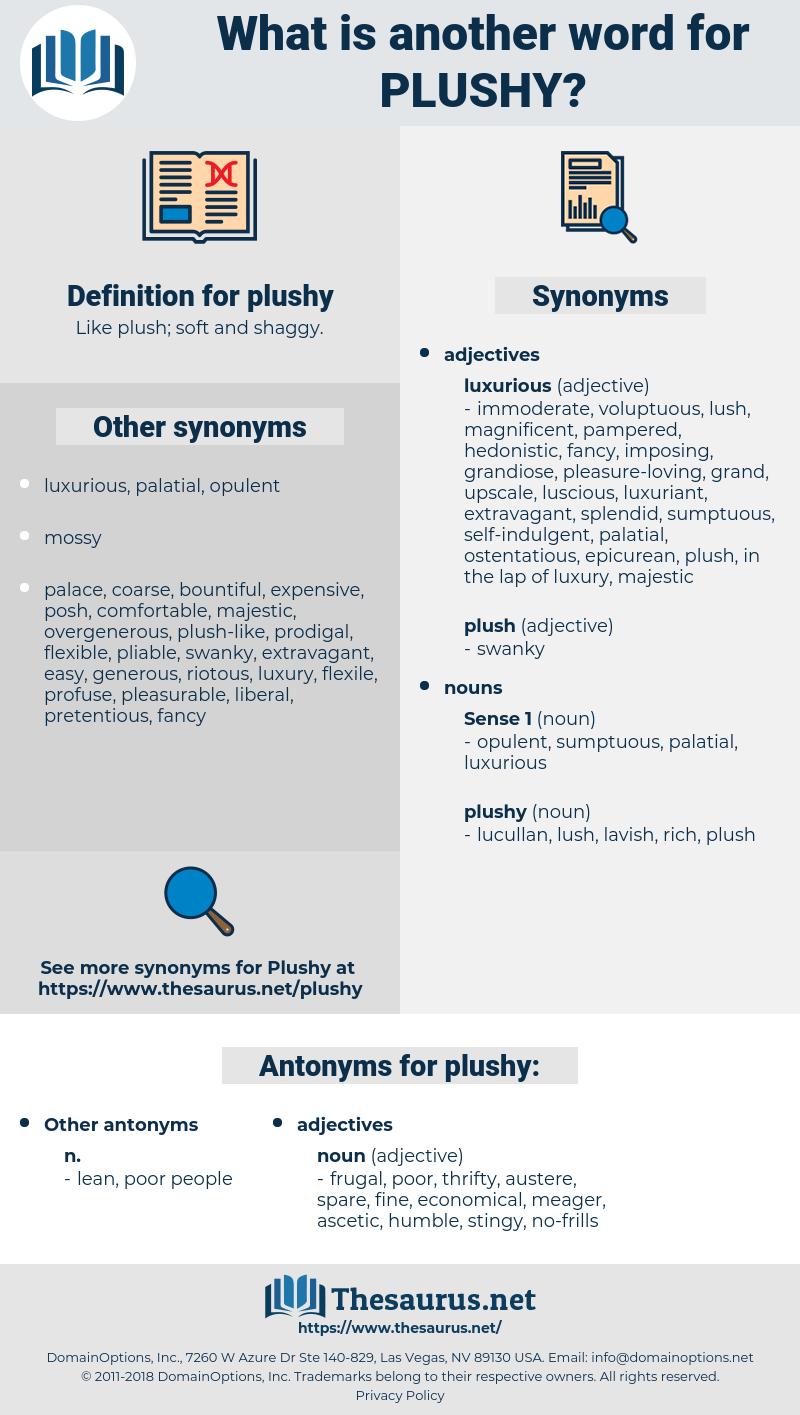 plushy, synonym plushy, another word for plushy, words like plushy, thesaurus plushy