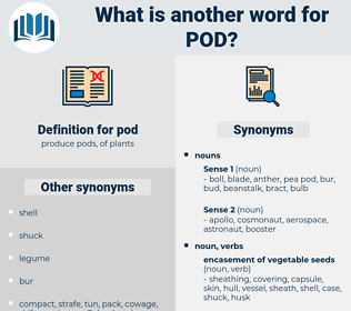 pod, synonym pod, another word for pod, words like pod, thesaurus pod