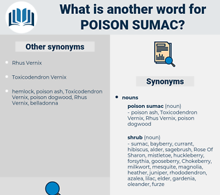 poison sumac, synonym poison sumac, another word for poison sumac, words like poison sumac, thesaurus poison sumac