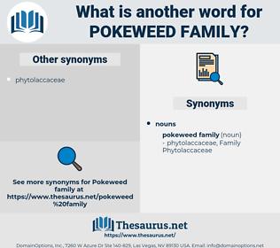 pokeweed family, synonym pokeweed family, another word for pokeweed family, words like pokeweed family, thesaurus pokeweed family