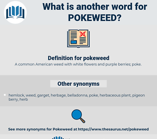 pokeweed, synonym pokeweed, another word for pokeweed, words like pokeweed, thesaurus pokeweed