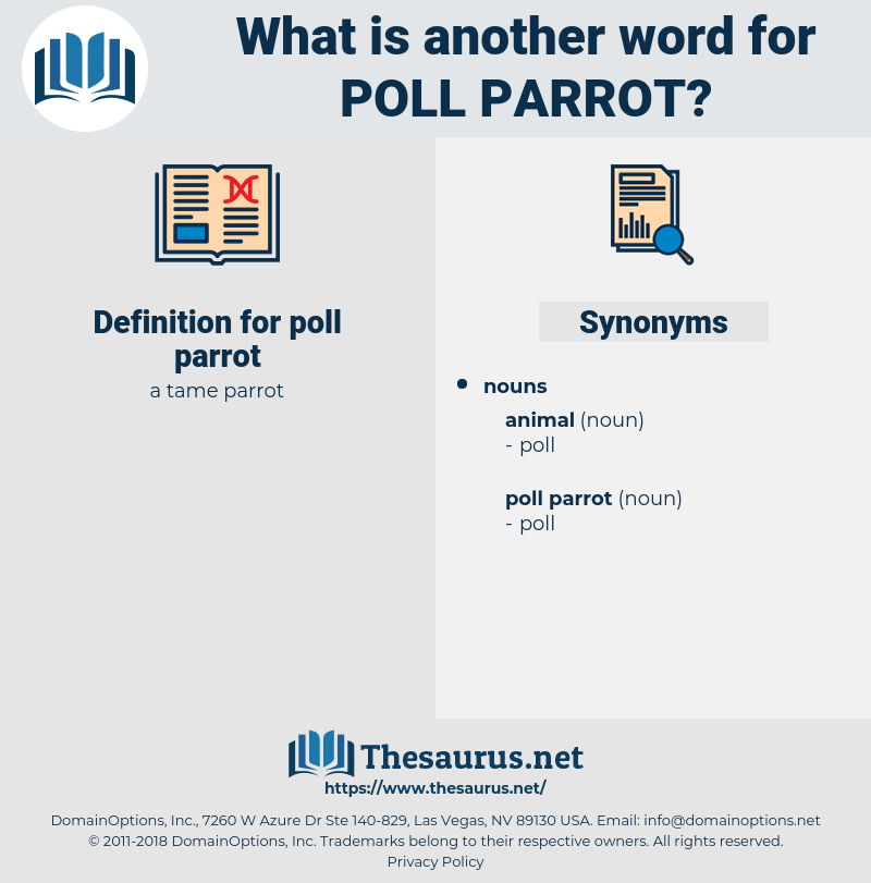 poll parrot, synonym poll parrot, another word for poll parrot, words like poll parrot, thesaurus poll parrot