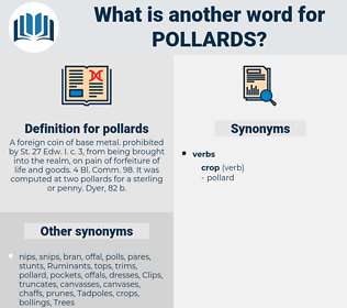 pollards, synonym pollards, another word for pollards, words like pollards, thesaurus pollards