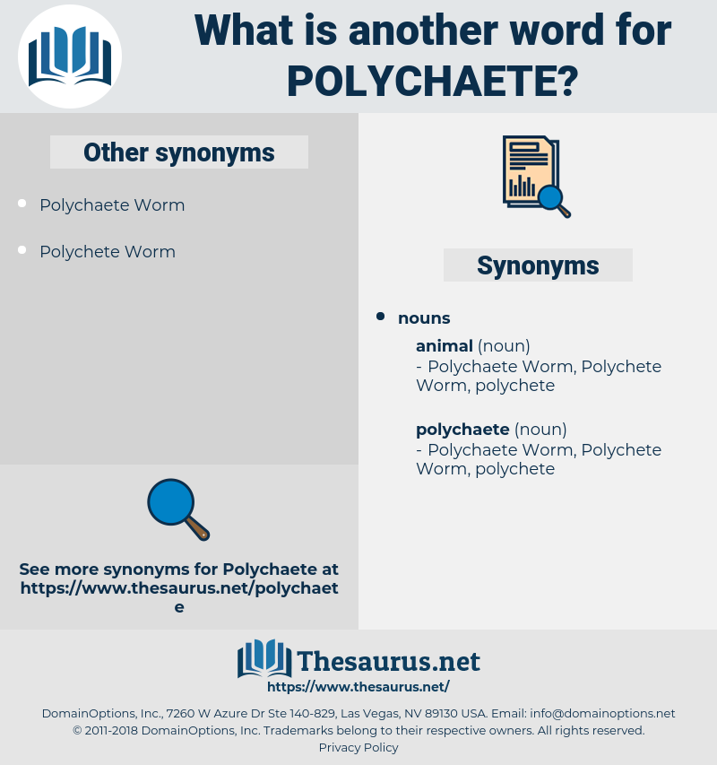 polychaete, synonym polychaete, another word for polychaete, words like polychaete, thesaurus polychaete