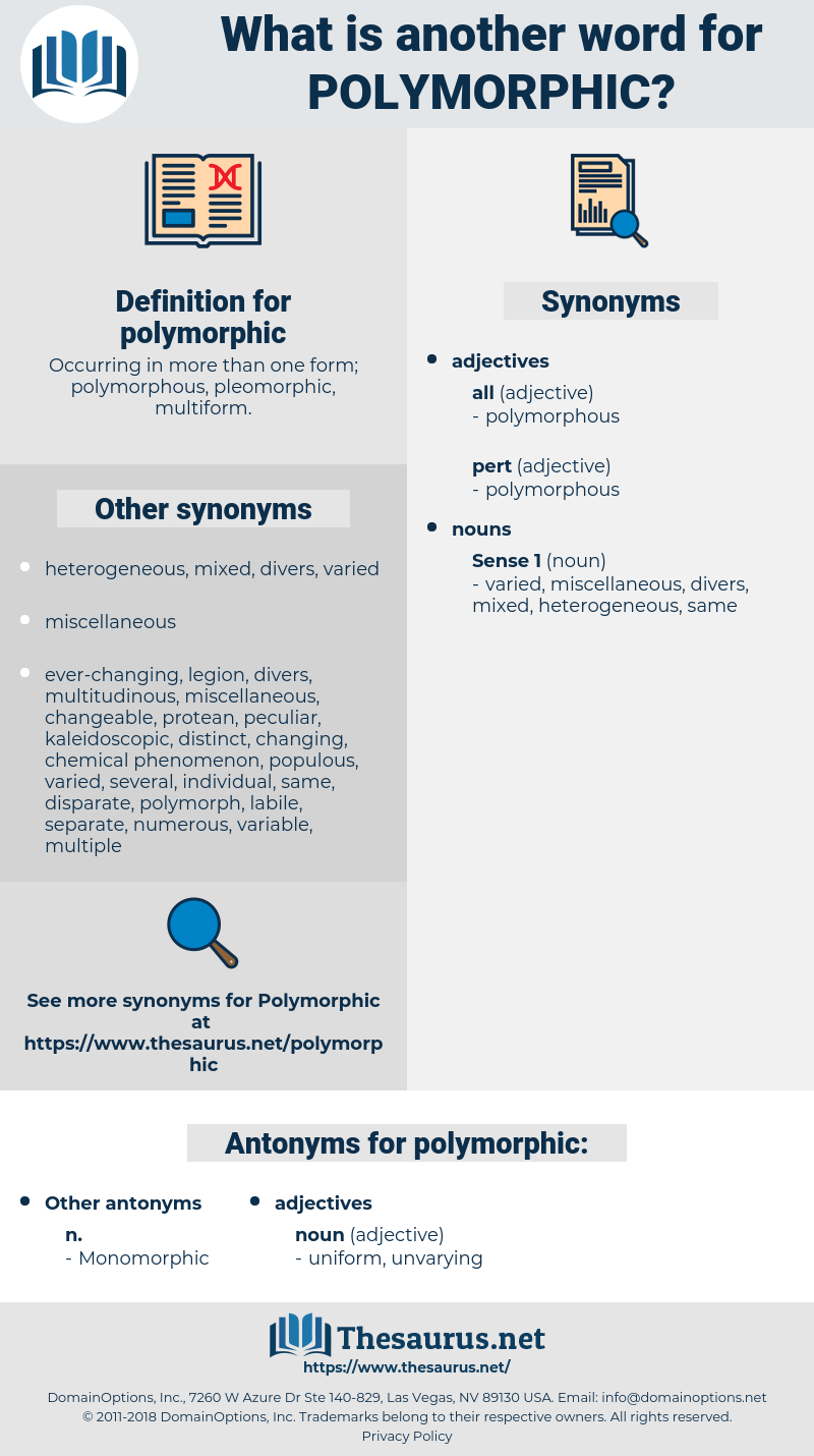 polymorphic, synonym polymorphic, another word for polymorphic, words like polymorphic, thesaurus polymorphic