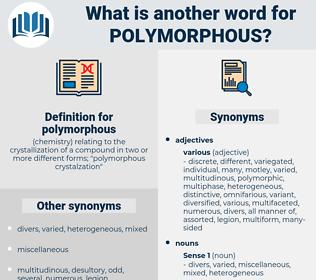 polymorphous, synonym polymorphous, another word for polymorphous, words like polymorphous, thesaurus polymorphous