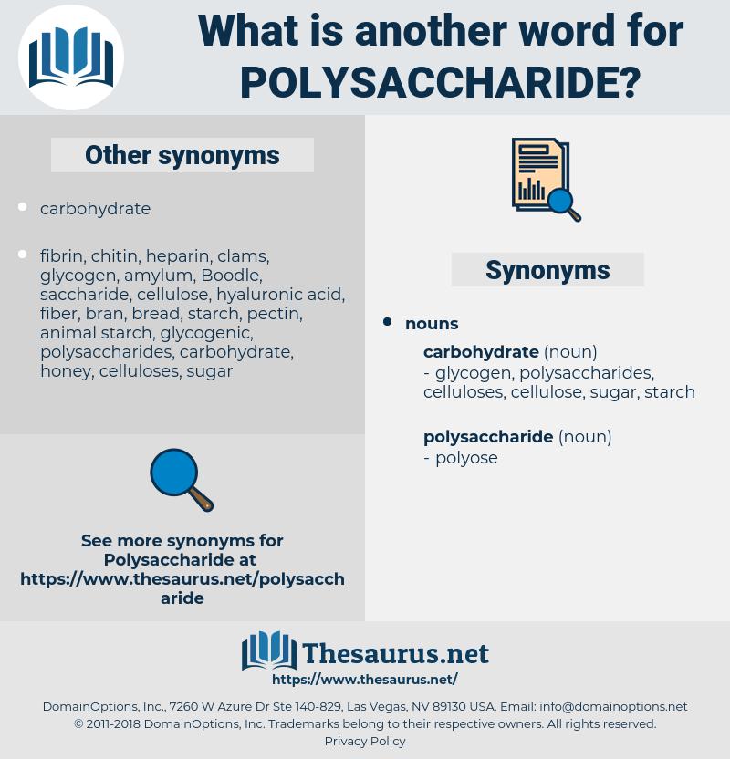 polysaccharide, synonym polysaccharide, another word for polysaccharide, words like polysaccharide, thesaurus polysaccharide