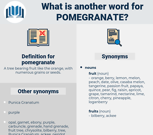 pomegranate, synonym pomegranate, another word for pomegranate, words like pomegranate, thesaurus pomegranate