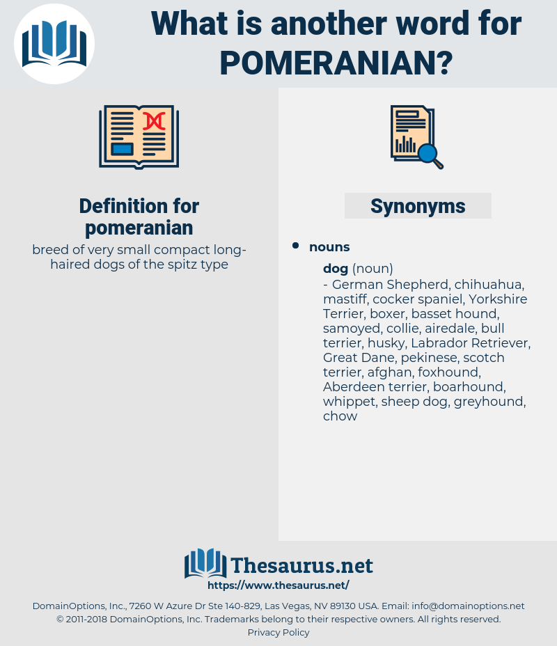 pomeranian, synonym pomeranian, another word for pomeranian, words like pomeranian, thesaurus pomeranian