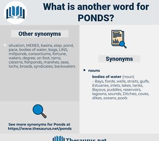 ponds, synonym ponds, another word for ponds, words like ponds, thesaurus ponds