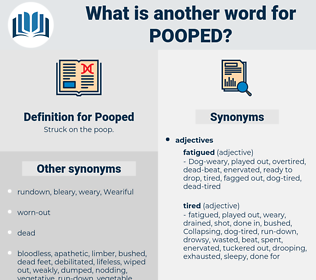 Pooped, synonym Pooped, another word for Pooped, words like Pooped, thesaurus Pooped