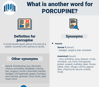 porcupine, synonym porcupine, another word for porcupine, words like porcupine, thesaurus porcupine
