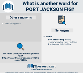 Port Jackson Fig, synonym Port Jackson Fig, another word for Port Jackson Fig, words like Port Jackson Fig, thesaurus Port Jackson Fig