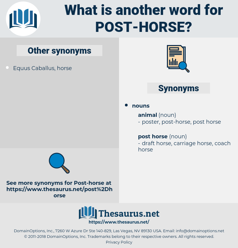 post horse, synonym post horse, another word for post horse, words like post horse, thesaurus post horse